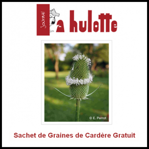 Graines de Cardères Gratuites La Hulotte - anti-crise.fr
