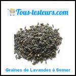 Test de Produit Tous Testeurs : Graines de Lavande à Planter - anti-crise.fr