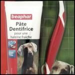 Test de Produit Conso Animo : Duo Dentifrice Beaphar - anti-crise.fr