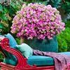 Bon Plan Groupon bon d'achat de 30€ vendu 15€ pour le site Pépinières & Jardinerie Derly