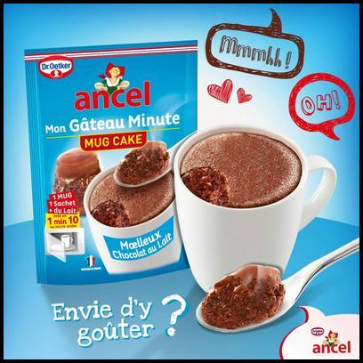 Test de Produit Tester des Produits : Mug Cake - Moelleux Choco Ancel - anti-crise.fr