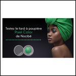 Test de Produit Miss Test : Fard à Paupières Pixel Color de Nocibé - anti-crise.fr