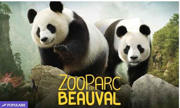 ZooParc Beauval : billets à prix réduits 18 et 24€