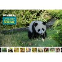 ZooParc Beauval :  séjours à prix réduits sur Groupon (à partir de 100€ pour 2 )