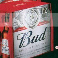 Pack de bière 12x25cl Bud chez Leclerc Centre-Est (25/06 – 06/07)