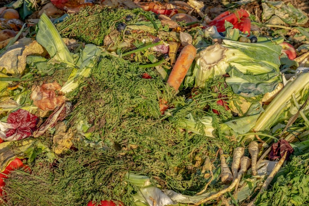 que mettre dans son compost - anti-crise.fr