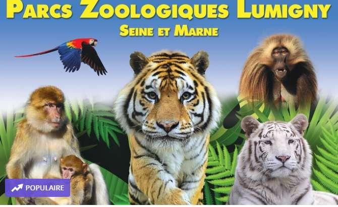 Terre des Singes – Parc des Felins : billets à prix réduits