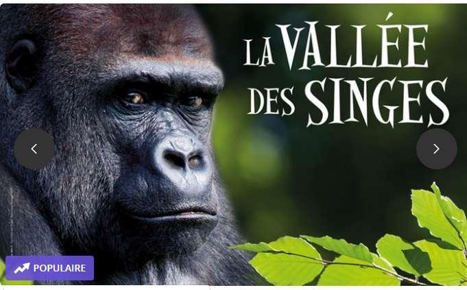 Vallée des singes billets avec jusqu'à 50% de réduction