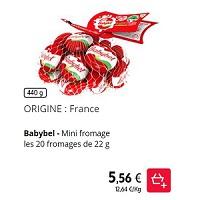 Filet de 20 Mini Fromages Rouges Babybel Partout