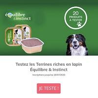 Test de Produit ConsoAnimo : Terrines Riches en Lapin pour Chiens Equilibre & Instinct