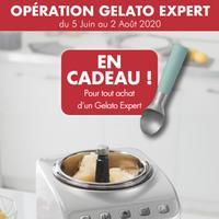 Bon Plan Magimix : 1 Gelato Expert Acheté = 1 Cuillère à Glace Offerte
